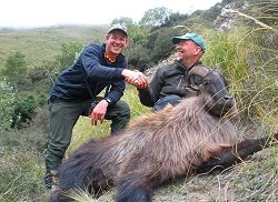 Free Range Red Stag and Himalayan Bull Tahr