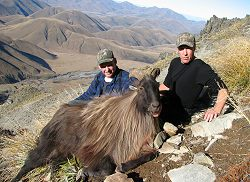 Free Range Red Stag, Himalayan Bull Tahr