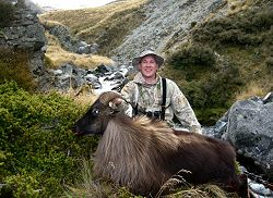 Lilydale offers combinations of tahr hunts, free range red stag hunts, and fallow deer hunts.